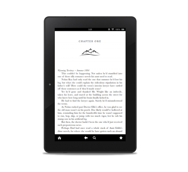 pretending to web first page ereader